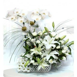 Beyaz Orkide, Gül, Lilyum Podyumda
