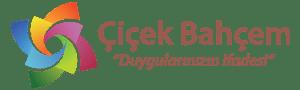 Ankara Çiçek | Çiçek Gönder, Online Çiçek Siparişi, Ucuz Çiçekçi